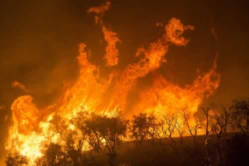 out-of-control-bushfire