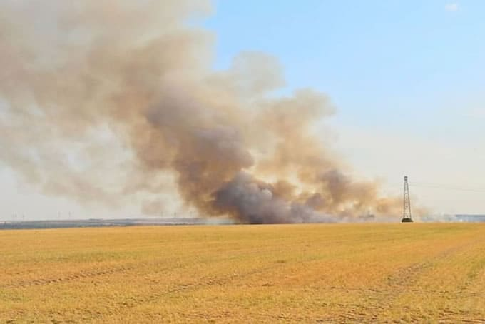 How to Survive a Bushfire in Your House