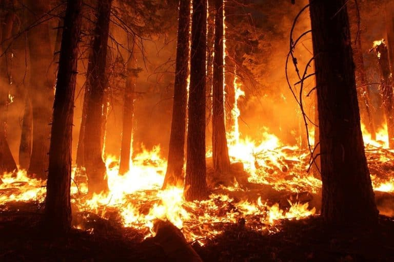 Update on California wildfires